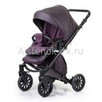 Коляска  ANEX CROSS 3 in 1 DARK PLUM
